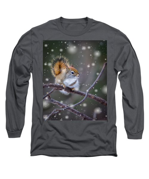 Squirrel Balancing Act Long Sleeve T-Shirt by Patti Deters