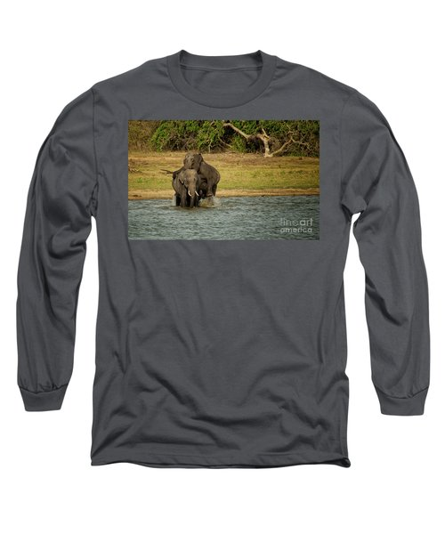 Sri Lankan Elephants  Long Sleeve T-Shirt