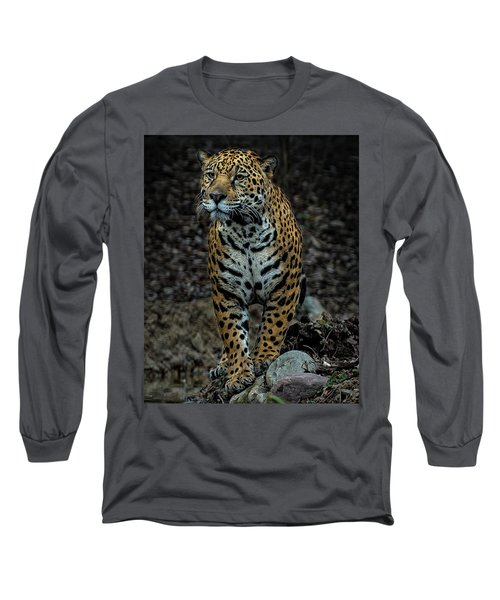 Long Sleeve T-Shirt featuring the photograph Stalking by Phil Abrams