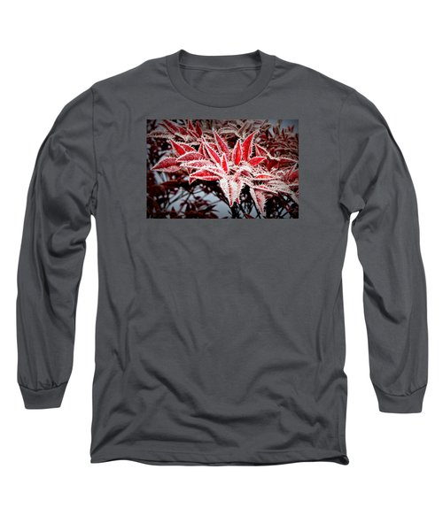Long Sleeve T-Shirt featuring the photograph Star Leaves by Katie Wing Vigil