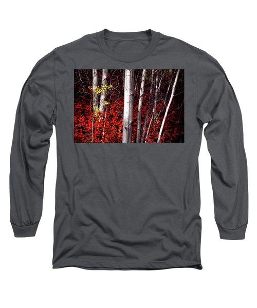 Stealing Beauty Long Sleeve T-Shirt
