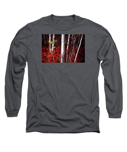 Stealing Beauty Long Sleeve T-Shirt