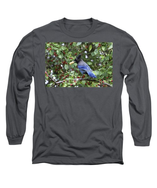 Steller's Jay Long Sleeve T-Shirt