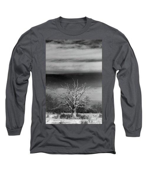 Still Standing Long Sleeve T-Shirt by Nicki McManus