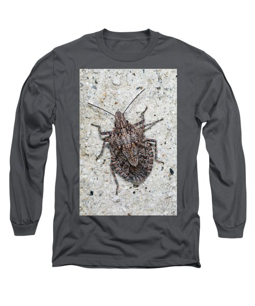 Long Sleeve T-Shirt featuring the photograph Stink Bug by Breck Bartholomew