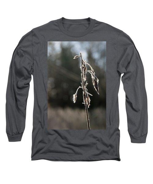 Straw In Backlight Long Sleeve T-Shirt