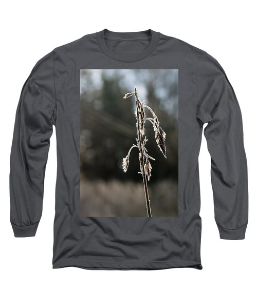 Straw In Backlight Long Sleeve T-Shirt