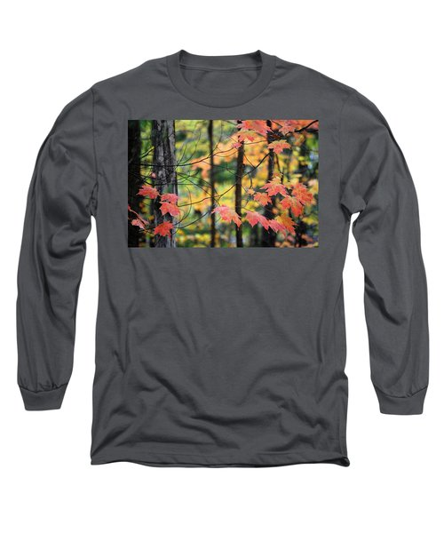 Stringing Up The Colors Long Sleeve T-Shirt