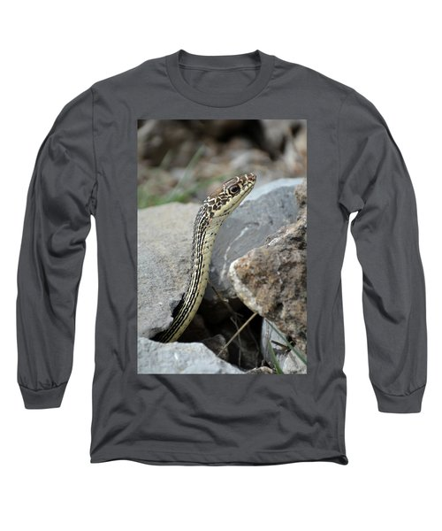 Striped Whipsnake, Masticophis Taeniatus Long Sleeve T-Shirt