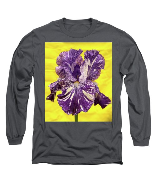 Stripped Lady Iris Long Sleeve T-Shirt
