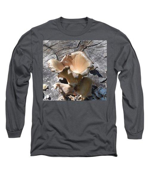 Stump Mushroom I Long Sleeve T-Shirt by R  Allen Swezey