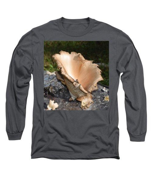 Stump Mushroom  Long Sleeve T-Shirt by R  Allen Swezey