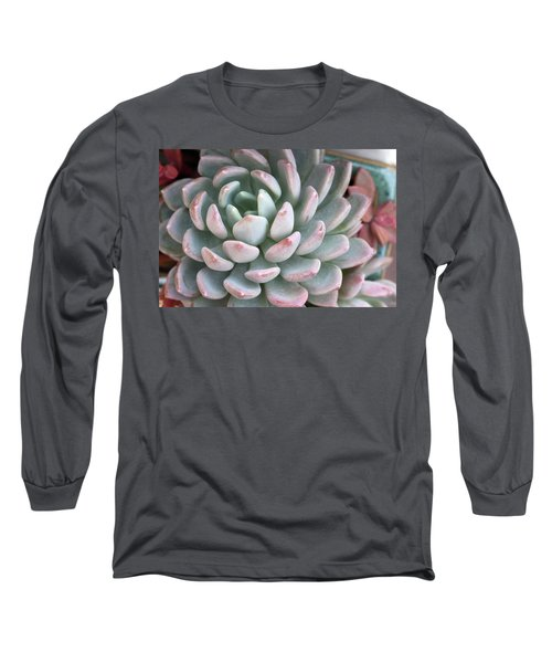 Succulent Beauty Long Sleeve T-Shirt by Catherine Lau