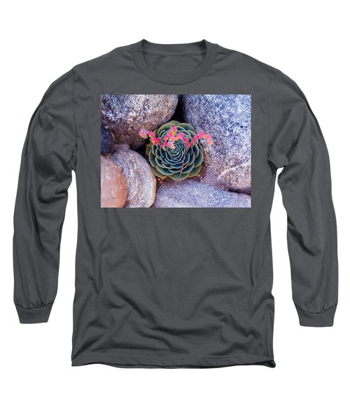 Succulent Flowers Long Sleeve T-Shirt by Mark Barclay