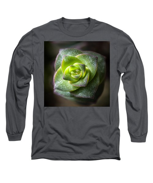 Succulent Plant Long Sleeve T-Shirt by Catherine Lau