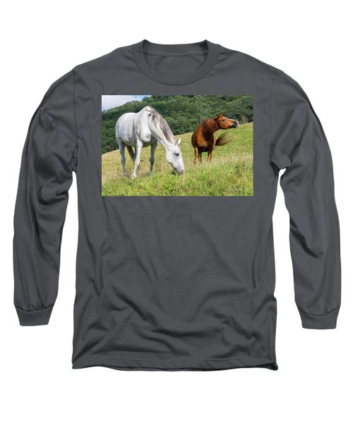 Summer Evening For Horses Long Sleeve T-Shirt