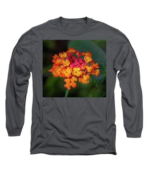 Summer Floral Colors Long Sleeve T-Shirt