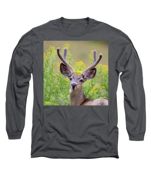 Summer Mule Deer Long Sleeve T-Shirt by Jack Bell
