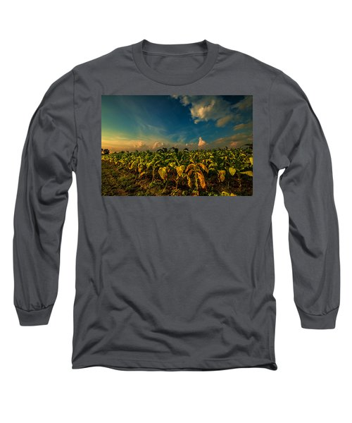 Summer Tobacco  Long Sleeve T-Shirt by John Harding