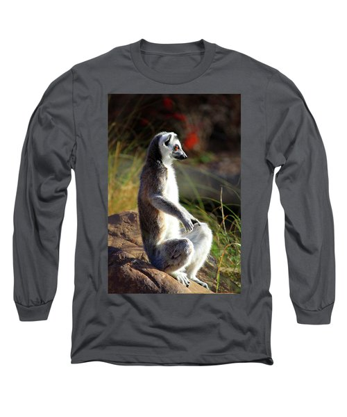 Sunbathing Long Sleeve T-Shirt by Inspirational Photo Creations Audrey Woods