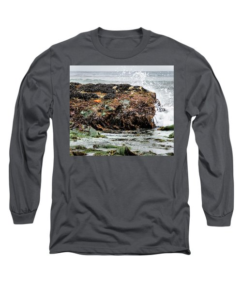 Sunbathing Starfish Long Sleeve T-Shirt