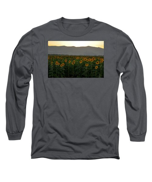 Long Sleeve T-Shirt featuring the photograph Sunflowers by Dubi Roman