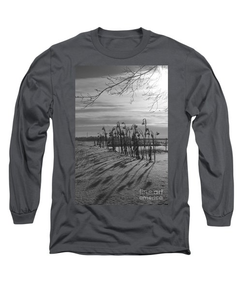 Sunflowers In The Winter Sun Long Sleeve T-Shirt