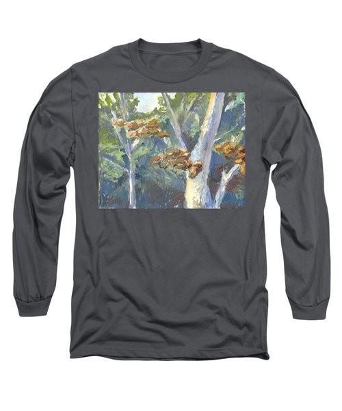 Sunlight And Sycamores Long Sleeve T-Shirt
