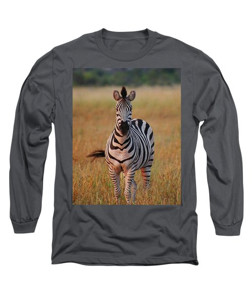 Sunset Zebra Long Sleeve T-Shirt