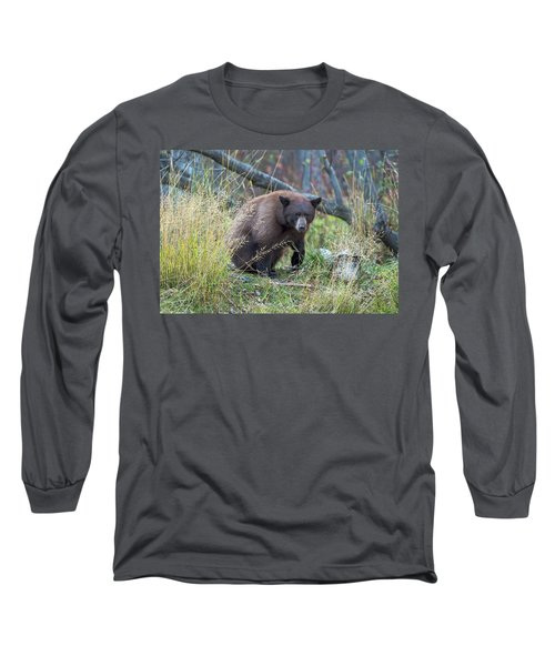 Surprised Bear Long Sleeve T-Shirt