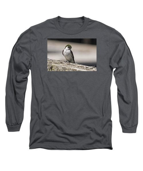 Long Sleeve T-Shirt featuring the photograph Swallow by Inge Riis McDonald