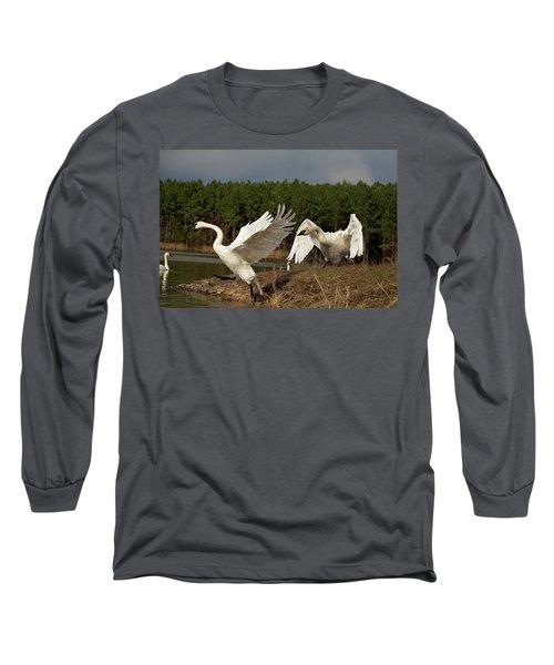 Swan Fight Long Sleeve T-Shirt