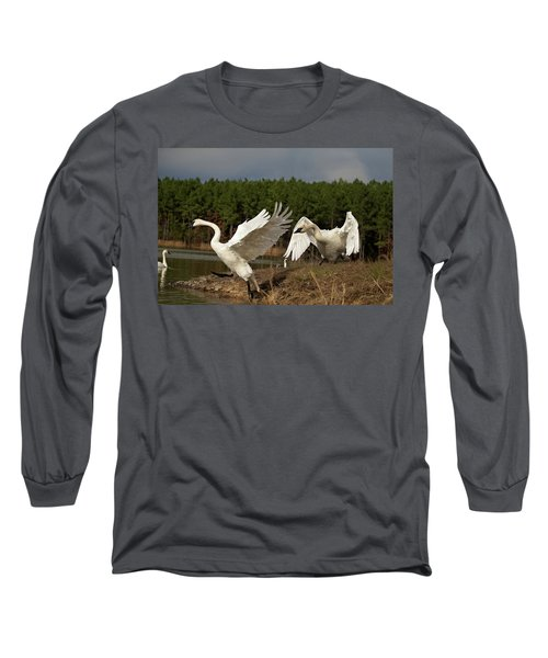 Swan Fight Long Sleeve T-Shirt