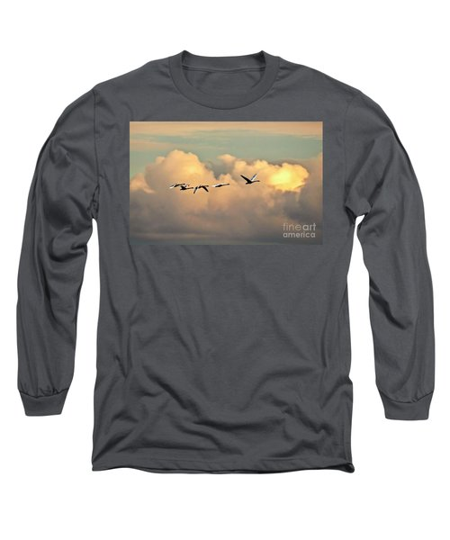 Swan Heaven Long Sleeve T-Shirt