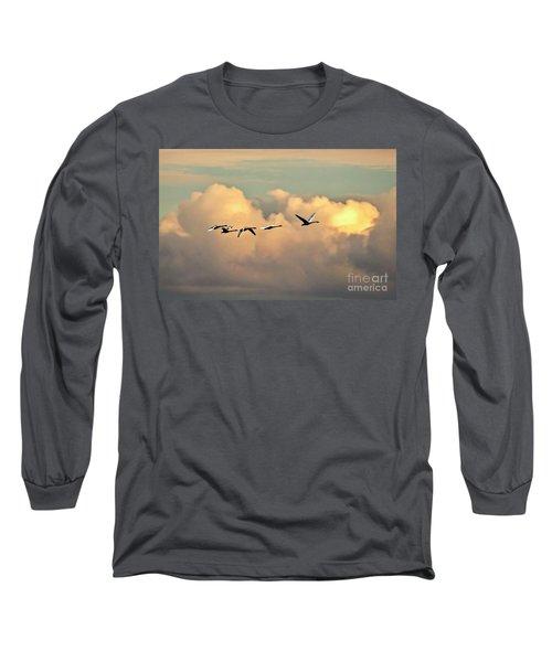 Swan Heaven Long Sleeve T-Shirt