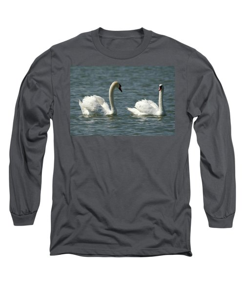 Swans On Lake  Long Sleeve T-Shirt
