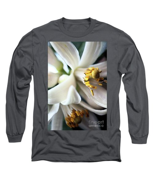 Sweet Fragrance 2 Long Sleeve T-Shirt