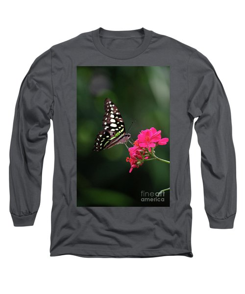Tailed Jay Butterfly -graphium Agamemnon- On Pink Flower Long Sleeve T-Shirt
