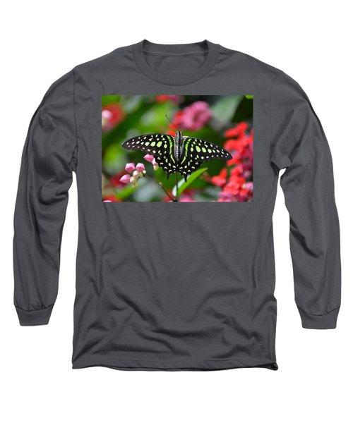 Tailed Jay4 Long Sleeve T-Shirt by Ronda Ryan