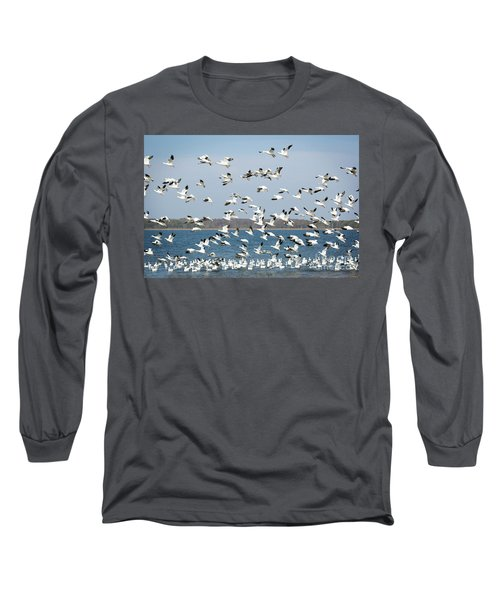 Taking Flight IIi Long Sleeve T-Shirt