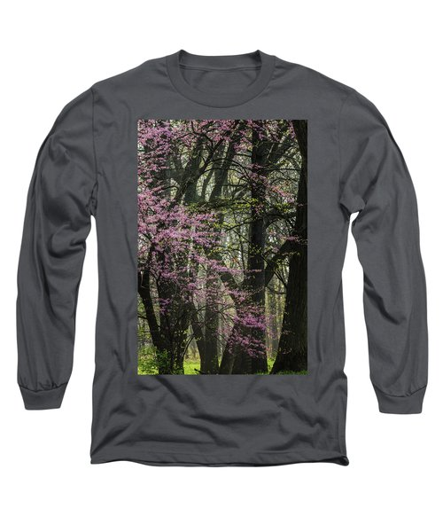 Tall Red Buds In Spring Long Sleeve T-Shirt by Joni Eskridge