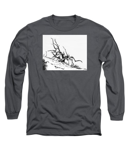 Long Sleeve T-Shirt featuring the photograph Tangled by Alan Raasch
