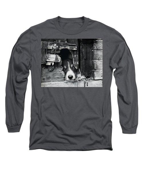 Working Border Collie Dog. Long Sleeve T-Shirt