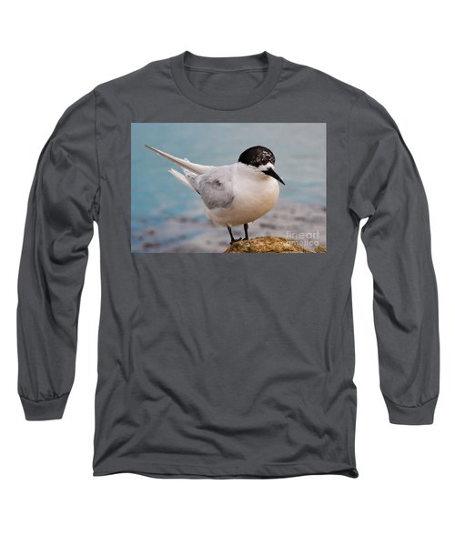 Long Sleeve T-Shirt featuring the photograph Tern 1 by Werner Padarin
