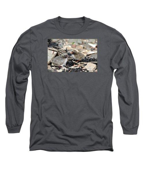 Tern Chicks Long Sleeve T-Shirt by David Grant