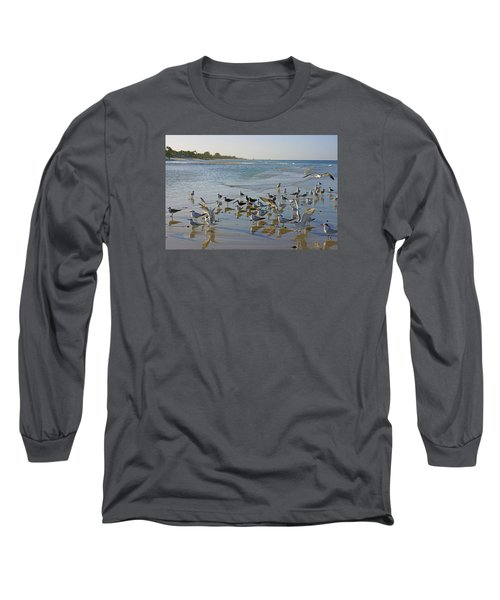 Long Sleeve T-Shirt featuring the photograph Terns And Seagulls On The Beach In Naples, Fl by Robb Stan