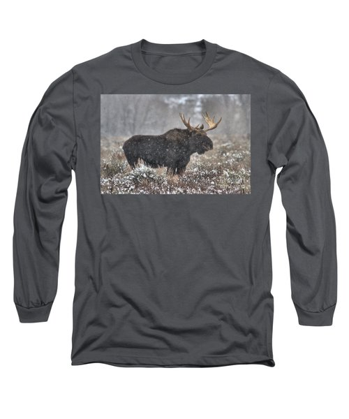 Long Sleeve T-Shirt featuring the photograph Teton Snowy Moose by Adam Jewell