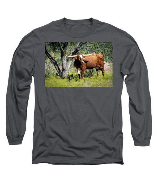 Long Sleeve T-Shirt featuring the photograph Texas Longhorn Steer by David Morefield