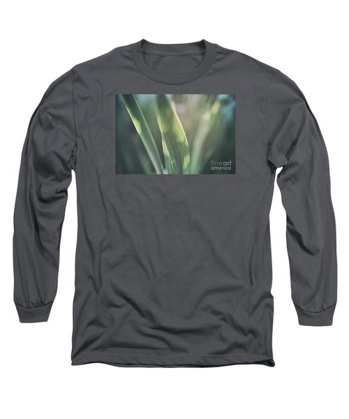 The Allotment Project - Sweetcorn Leaves Long Sleeve T-Shirt