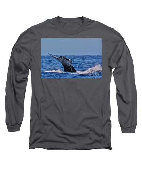 The Dive Long Sleeve T-Shirt by Sheila Ping